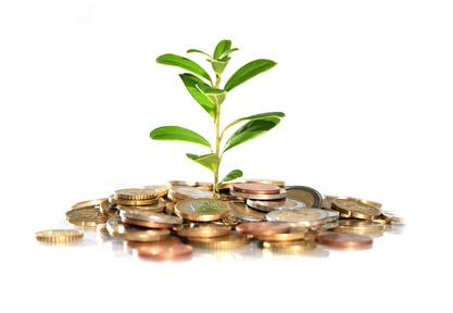 Baum wächst aus Geldstuecken